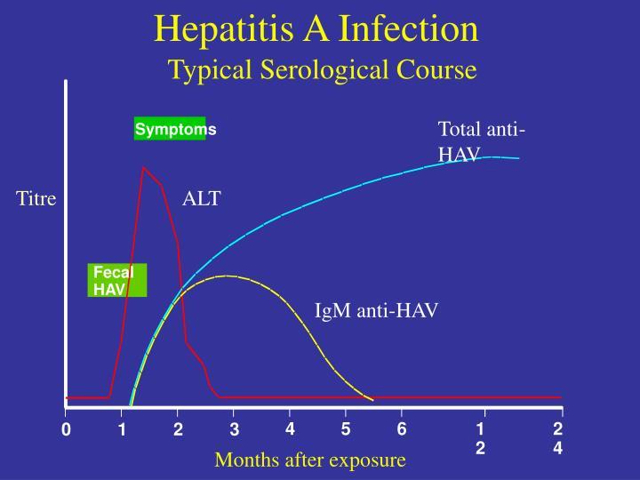Hepatitis A Infection