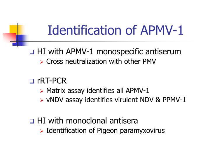 Identification of APMV-1