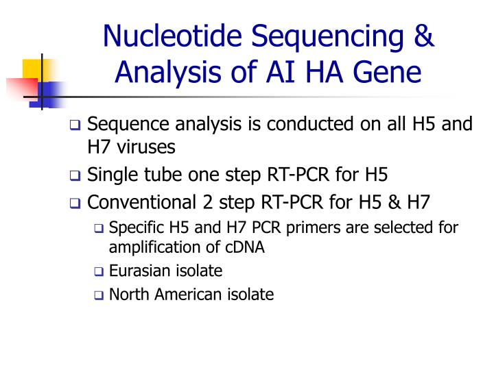 Nucleotide Sequencing & Analysis of AI HA Gene
