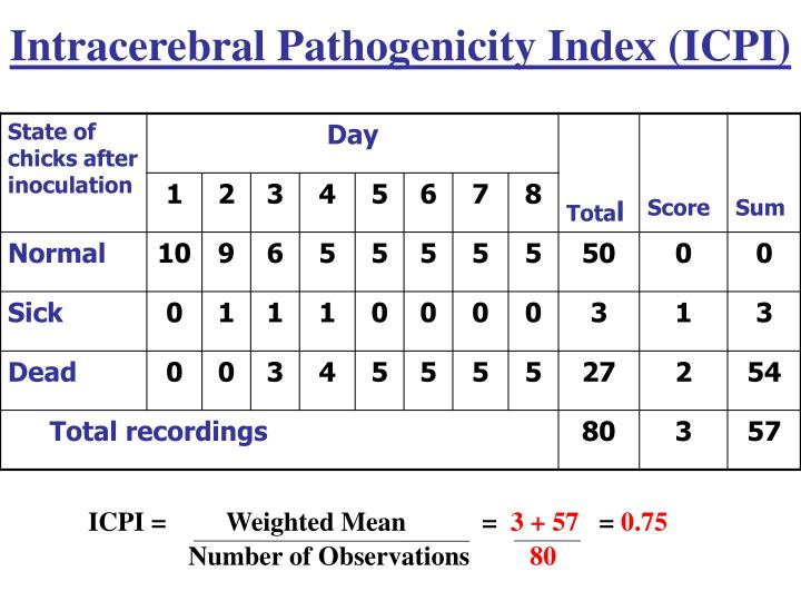 Intracerebral Pathogenicity Index (ICPI)
