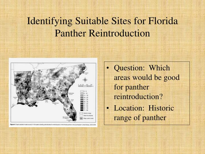 Identifying Suitable Sites for Florida Panther Reintroduction