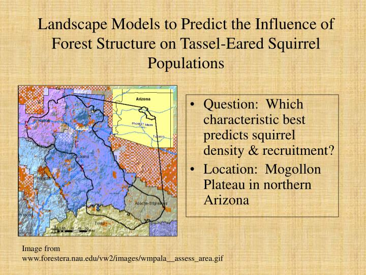 Landscape Models to Predict the Influence of Forest Structure on Tassel-Eared Squirrel Populations