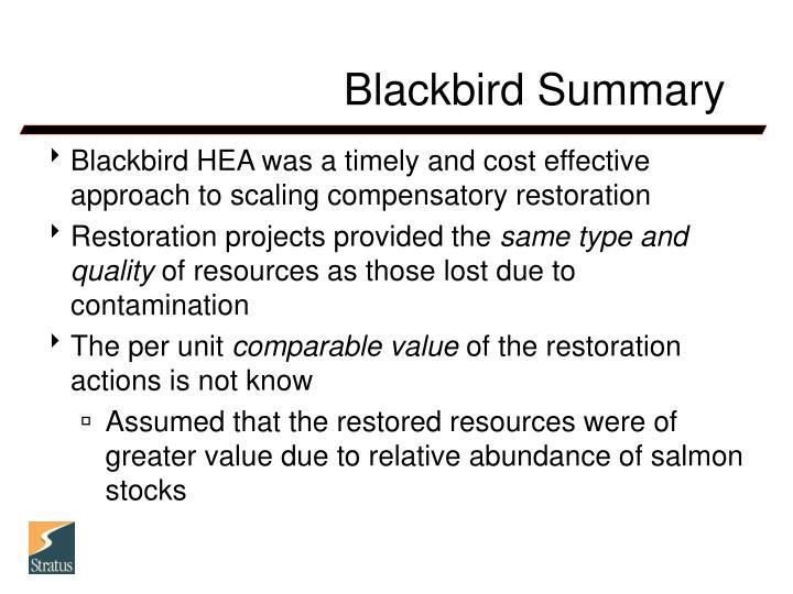 Blackbird Summary