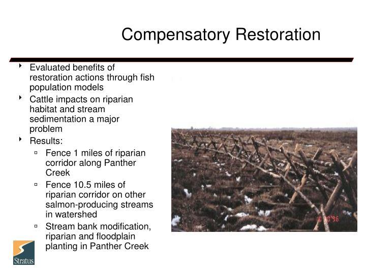 Compensatory Restoration