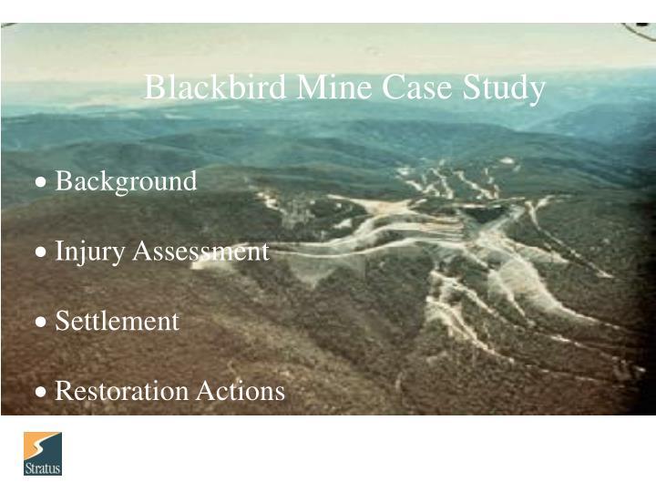 Blackbird Mine Case Study