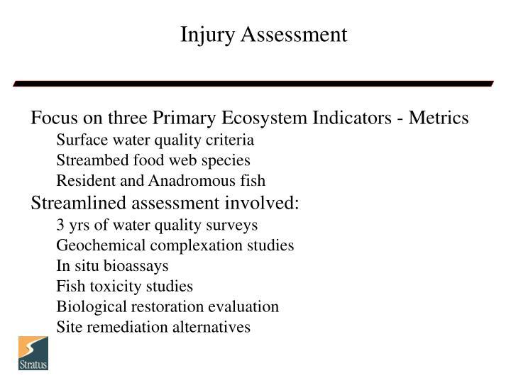Injury Assessment