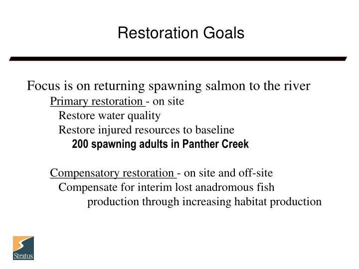 Restoration Goals