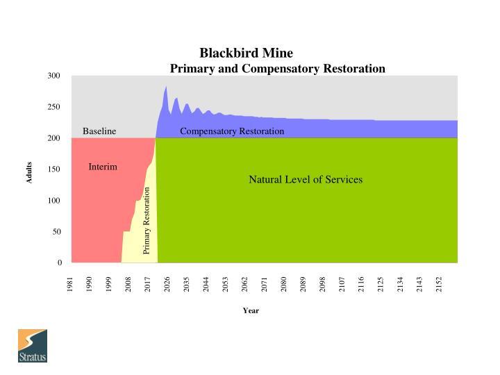 Blackbird Mine