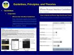 guidelines principles and theories2