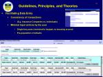 guidelines principles and theories26
