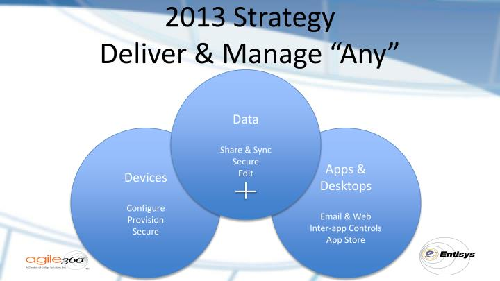 2013 Strategy