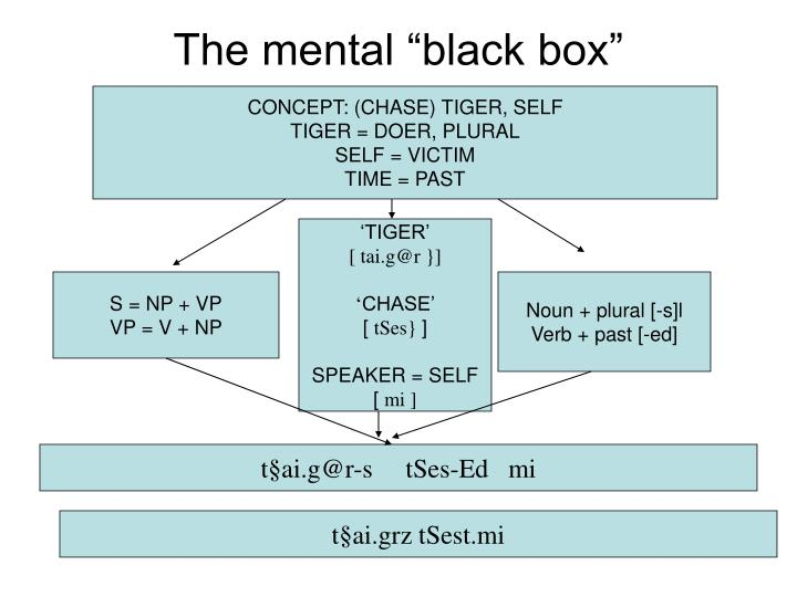 "The mental ""black box"""