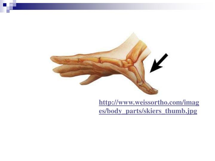 http://www.weissortho.com/images/body_parts/skiers_thumb.jpg