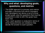 why and what developing goals questions and metrics