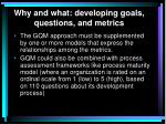 why and what developing goals questions and metrics1