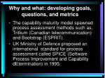 why and what developing goals questions and metrics5