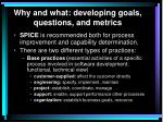 why and what developing goals questions and metrics6