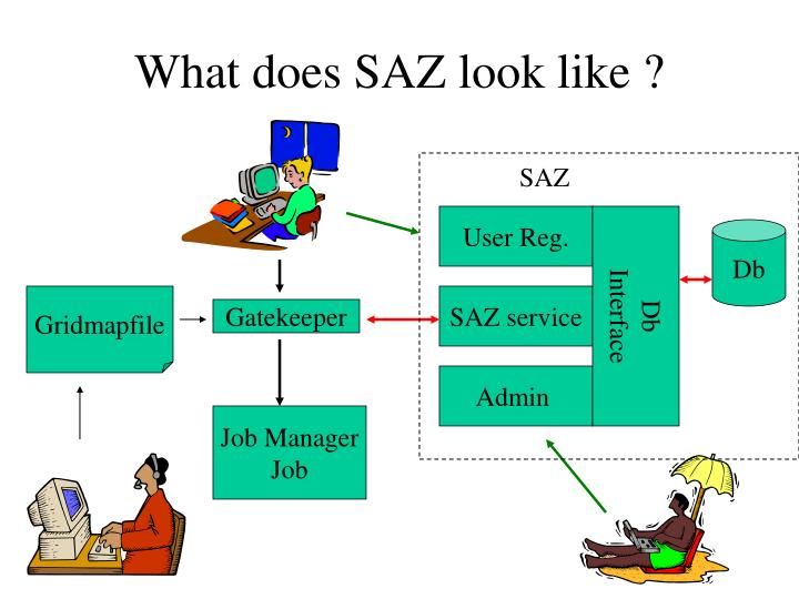 What does SAZ look like ?