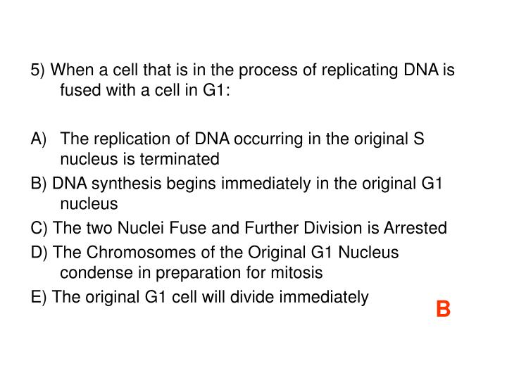 5) When a cell that is in the process of replicating DNA is fused with a cell in G1: