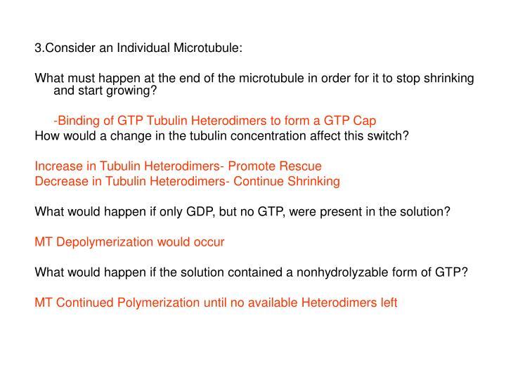 3.Consider an Individual Microtubule: