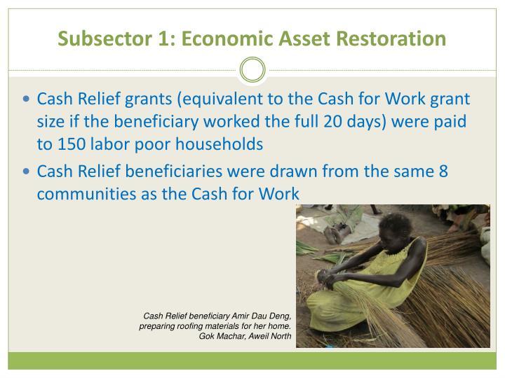 Subsector 1: Economic Asset Restoration