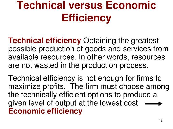 Technical versus Economic Efficiency