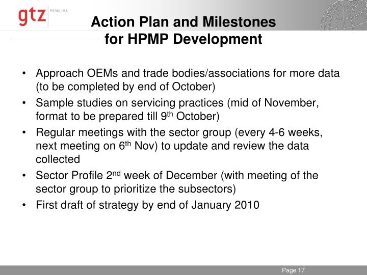 Action Plan and Milestones