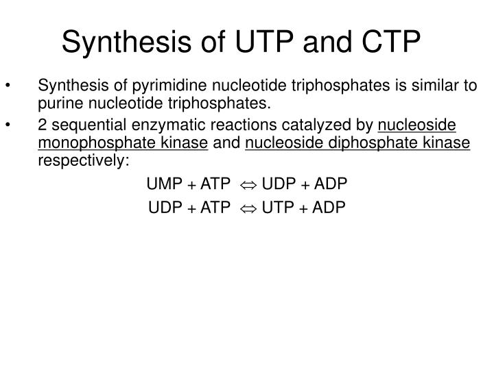 Synthesis of UTP and CTP