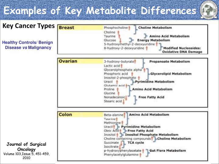 Examples of Key Metabolite Differences