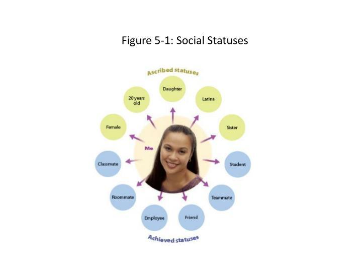 Figure 5-1: Social Statuses