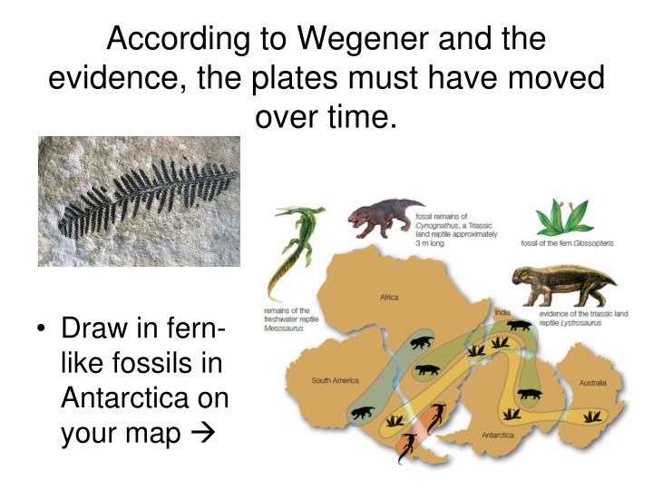 According to Wegener and the evidence, the plates must have moved over time.