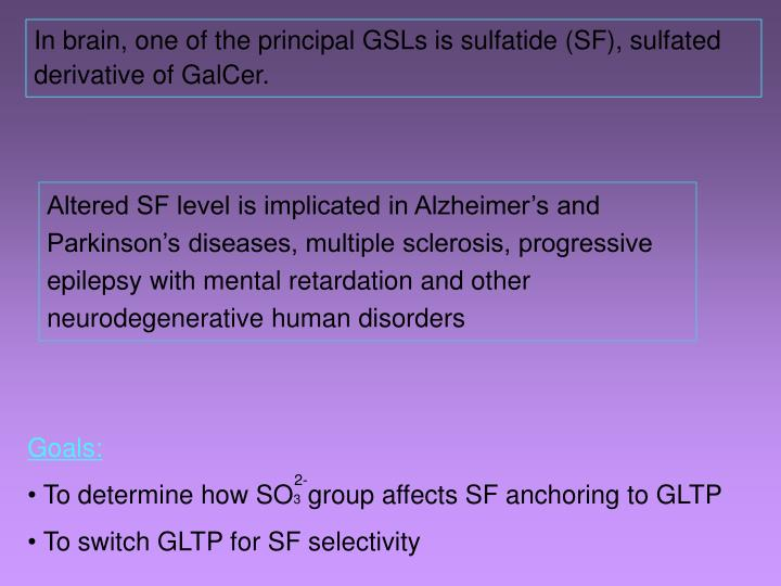 In brain, one of the principal GSLs is sulfatide (SF), sulfated derivative of GalCer.