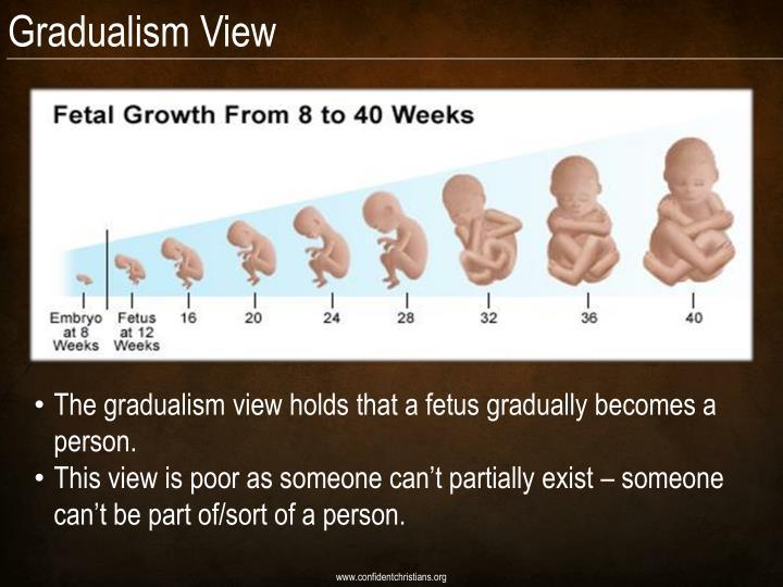 Gradualism View