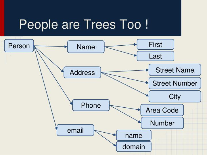 People are Trees Too !