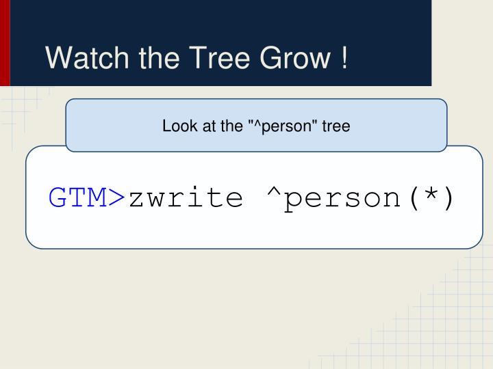 Watch the Tree Grow !