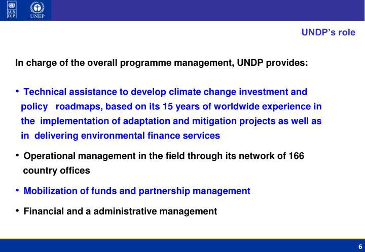 UNDP's role
