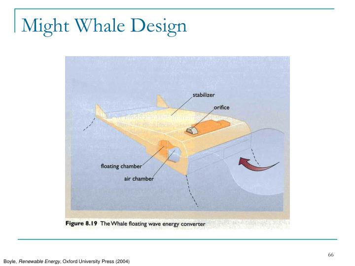 Might Whale Design