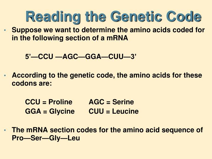 Reading the Genetic Code