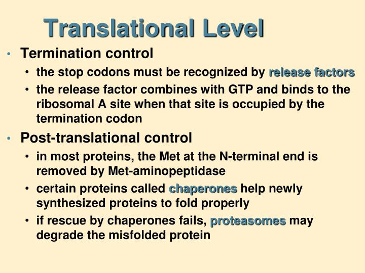 Translational Level