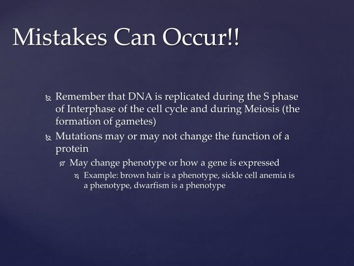 Remember that DNA is replicated during the S phase of Interphase