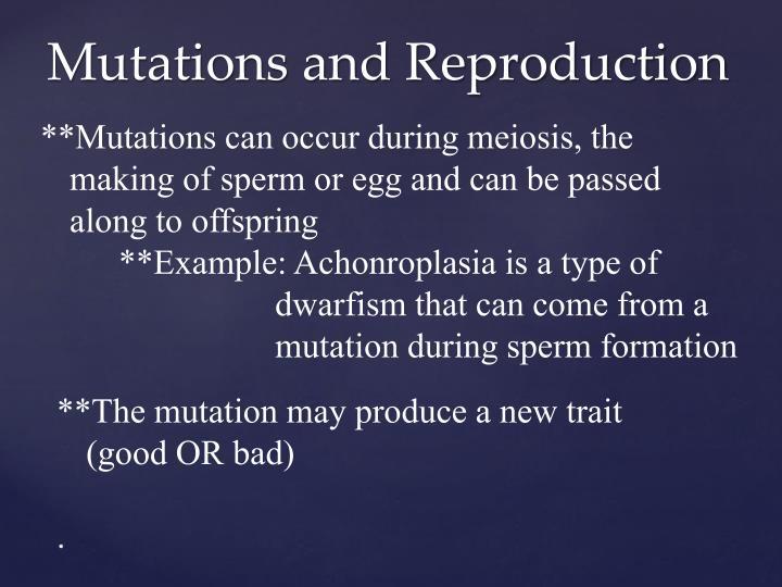**Mutations