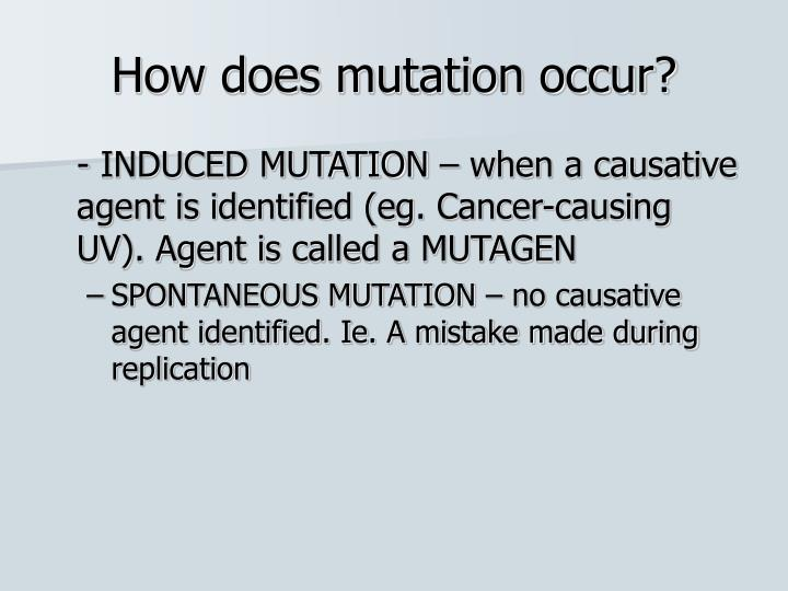 How does mutation occur?
