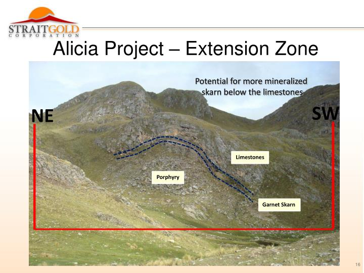 Alicia Project – Extension Zone