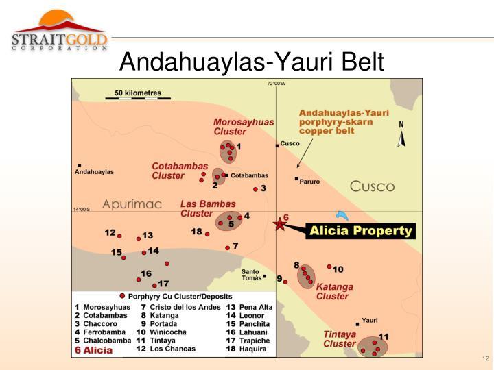 Andahuaylas-Yauri Belt