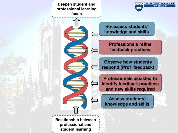 Deepen student and professional learning focus