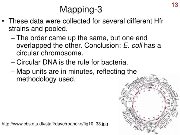 Mapping-3