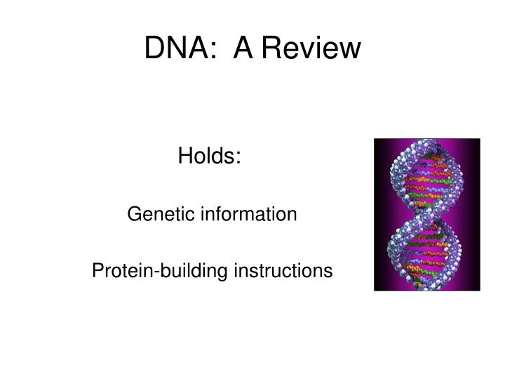 DNA:  A Review