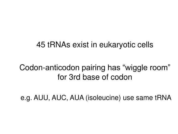 45 tRNAs exist in eukaryotic cells