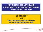 key responsibilities and functions of a strong efficient and competent vsb12