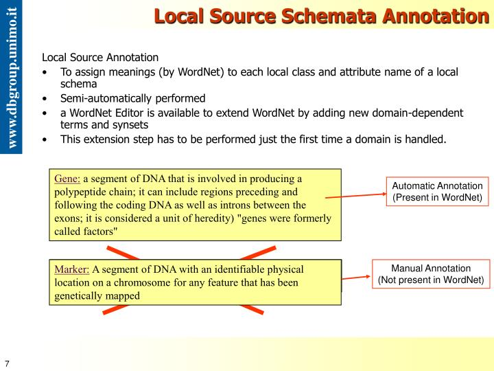 Local Source Schemata Annotation